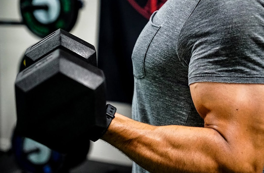 Biceps showtime. The secrets to bring your biceps to the next level